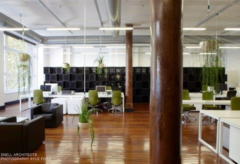 Niche projects office design construction fit out for Interior design agency sydney